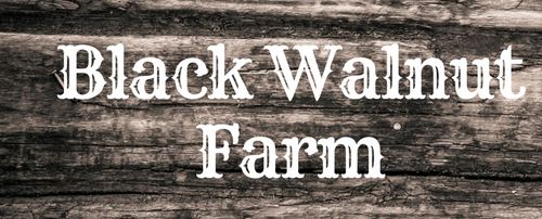Black Walnut Farm